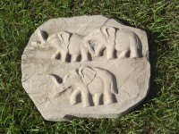 elephant steppies